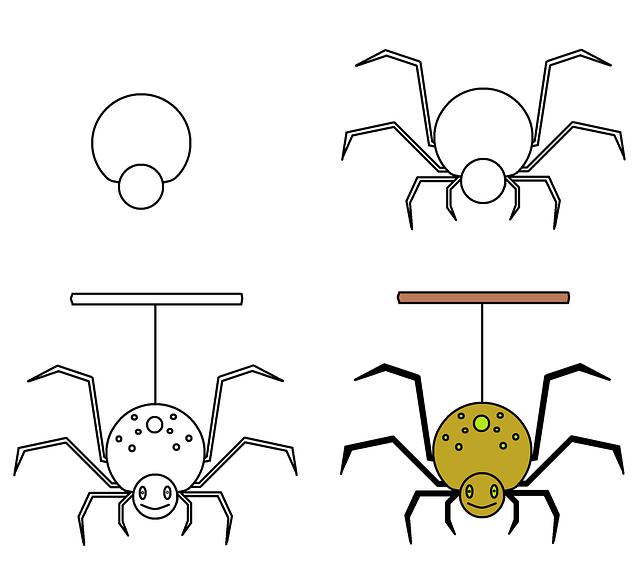 Cómo dibujar a una araña » ARACNIPEDIA